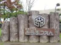 旭山動物園写真