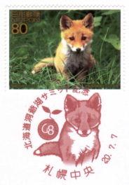 北海道洞爺湖サミット切手・キタキツネ/札幌中央局特印・押印機