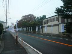 湘南国際マラソン・スタート地点