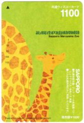 共通ウィズユーカード/円山動物園・キリンのイラスト